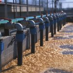 Water & Wastewater